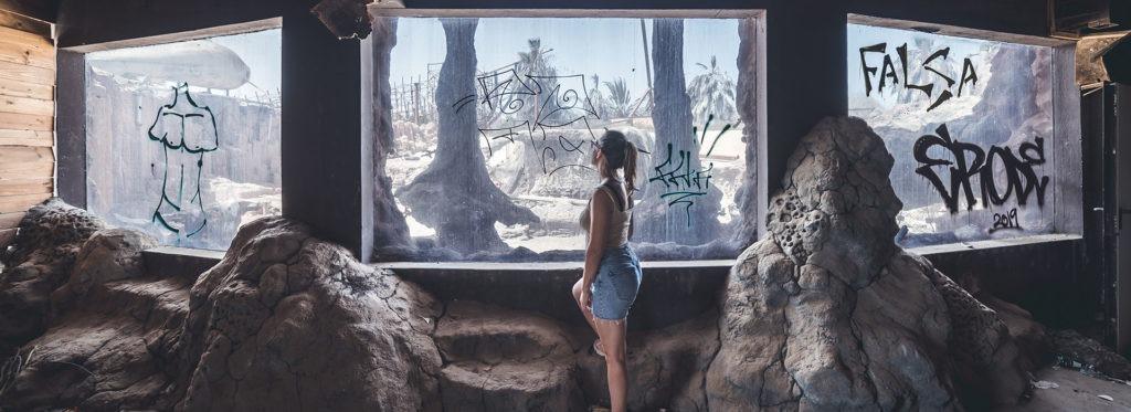 Imagen destacada del acuario abandonado